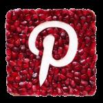 Icon P